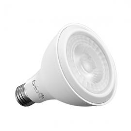 Lamp. Par30 Led 11w 6500k Bivolt